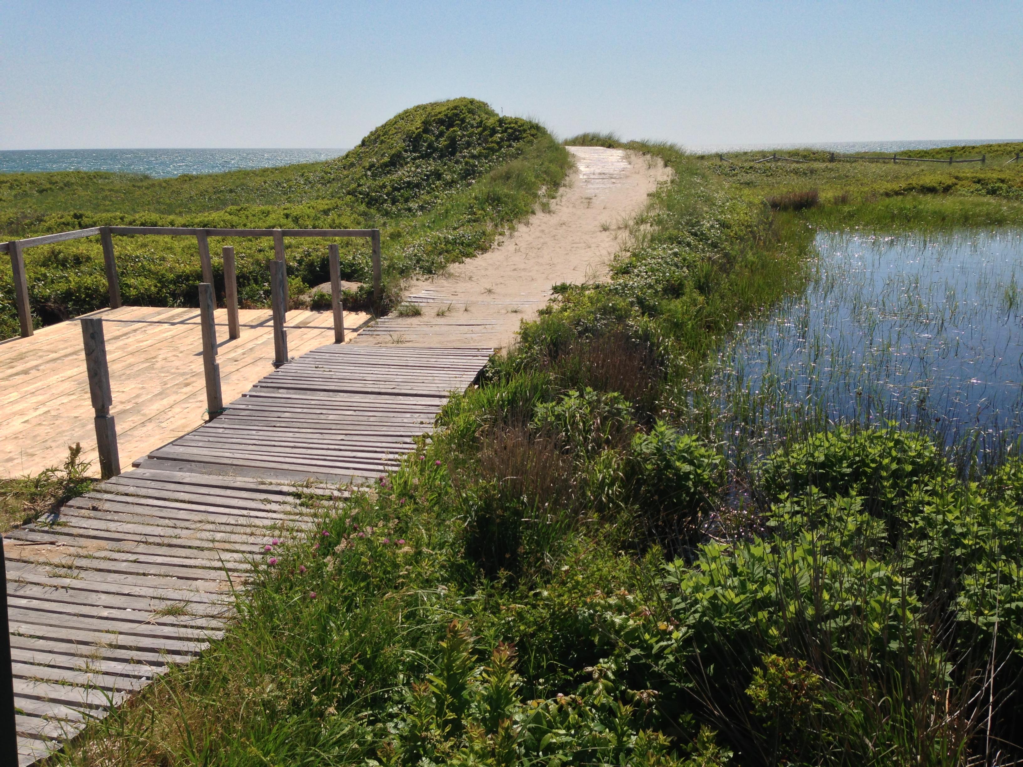 Moshup-Beach