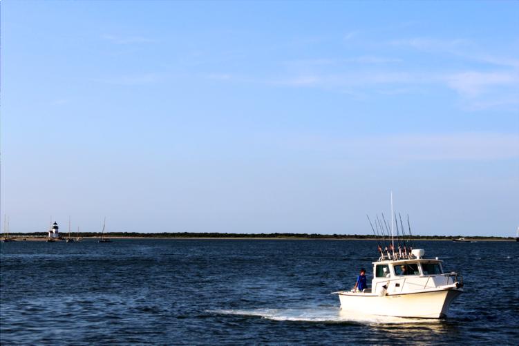 NantucketHarborCruise6